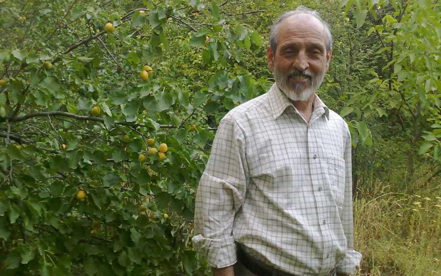 دکتر کاشانی