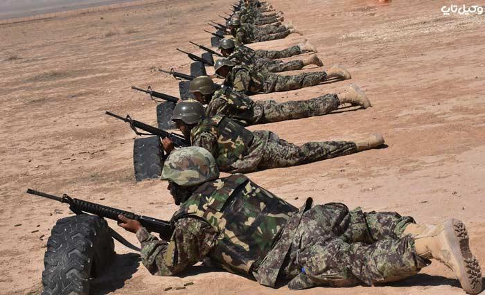 نظامی محارب